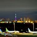 Photos: 夜景の羽田空港。。スカイツリー。。
