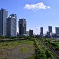 写真: 撮って出し。。今日の朝の横浜 5月27日