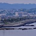 Photos: 横須賀の馬堀海岸の風景。。20170516