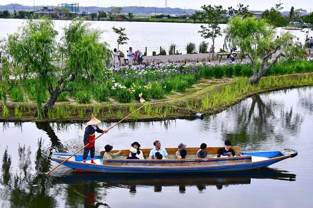 渡瀬舟も見渡せる。。水郷佐原あやめパーク 20170611