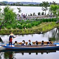 写真: 渡瀬舟も見渡せる。。水郷佐原あやめパーク 20170611