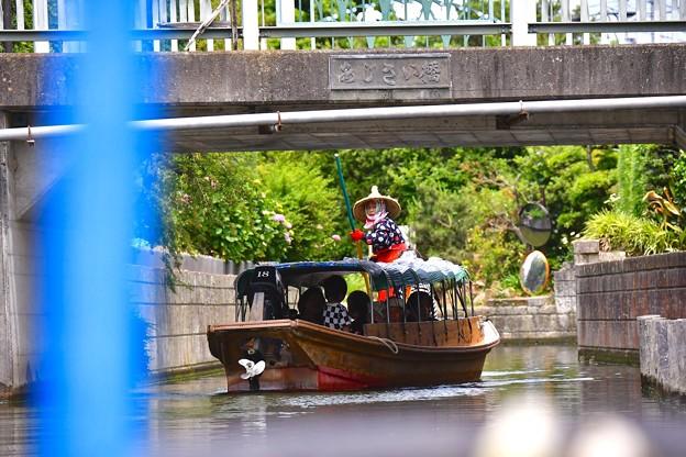 利根川を渡瀬舟で。。船頭さん手こき 20170611