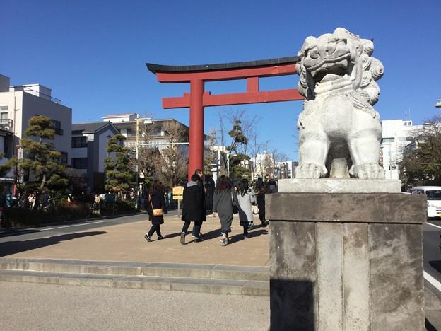 撮って出し。。鎌倉散策へ1月27日