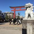 写真: 撮って出し。。鎌倉散策へ1月27日