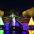 Winter Vista illumination昭和記念公園 綺麗な光の演出 20171223