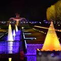 Winter Vista illumination昭和記念公園 綺麗な光の演出(2) 20171223