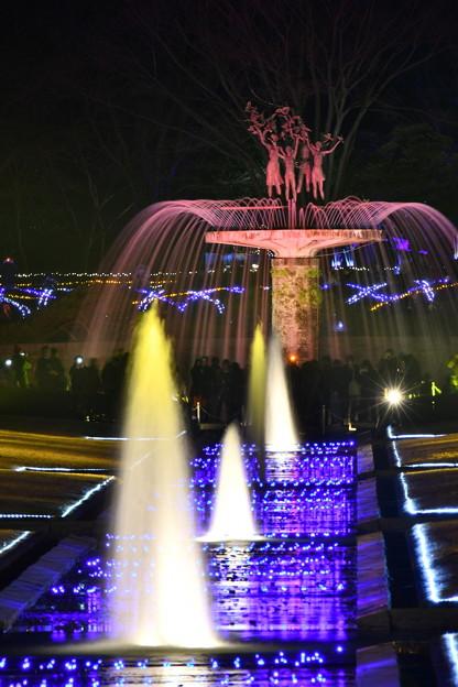 賑わうカナール噴水前。。ライトアップされて昭和記念公園イルミネーション 20171223
