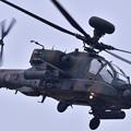 アパッチロングボウ。。AH-64D 民家墜落 2月5日