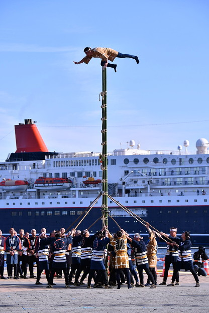 横浜消防出初式。。伝統的な梯子乗り演技(3) 20180107