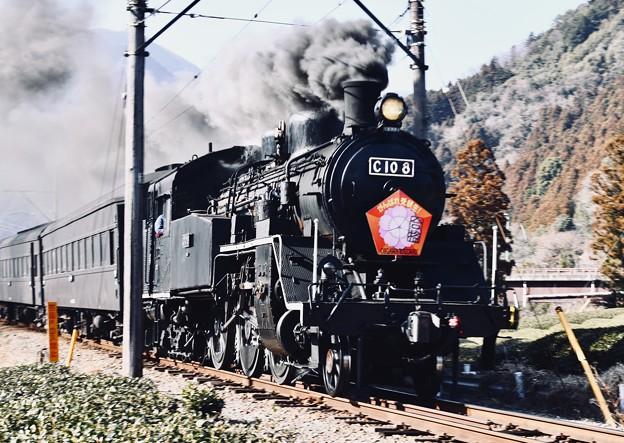 大井川鐵道SL。。青部鉄橋力強く走るC108 (3) 20180120