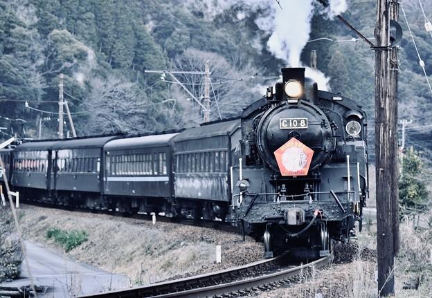 大井川鉄道 SL C108カーブを駆け抜けて 20180120