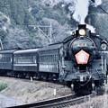 写真: 大井川鉄道 SL C108カーブを駆け抜けて 20180120