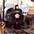 写真: 夕暮れの大井川鉄道 新金谷駅へSL C108。。20180120