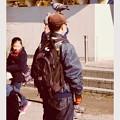 写真: 古都鎌倉鶴岡八幡宮。。鳩の憩いの場。。20180127