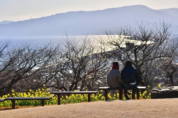 時間を忘れさせる風景。。吾妻山公園から見える相模湾 20180203