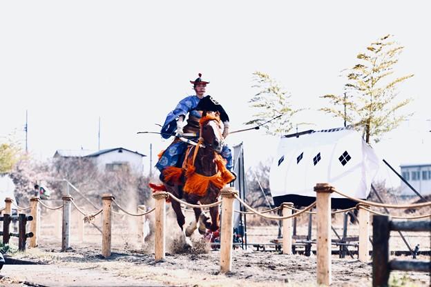 Photos: 女性騎手の流鏑馬。。慣らし走行 小田原曽我梅林 20180211