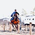 写真: 女性騎手の流鏑馬。。慣らし走行 小田原曽我梅林 20180211