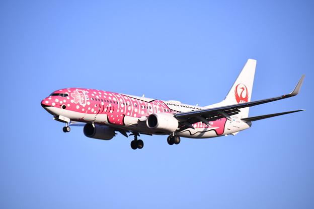 航空祭予行終えて福岡空港へ。。サクラジンベイアプローチ 20180217
