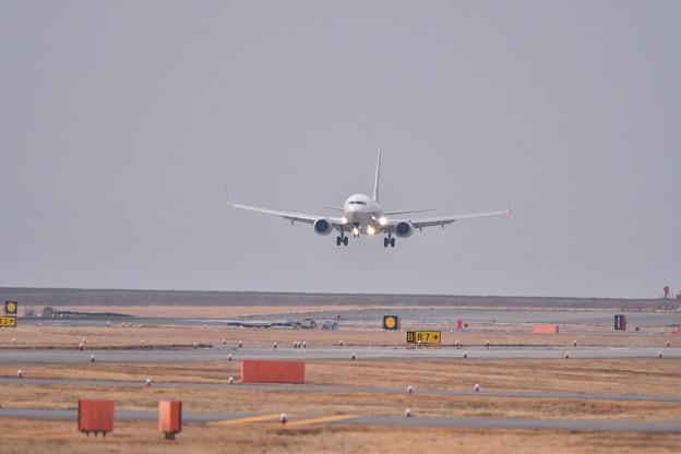 岩国錦帯橋空港へ東京からの到着便ANA 20190219
