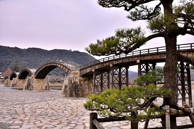山口県岩国の錦帯橋の綺麗さがわかる風景(1) 20180219