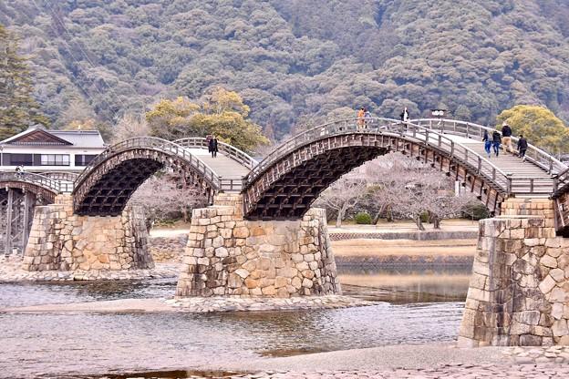 山口県岩国の錦帯橋の綺麗さがわかる風景(2) 20180219