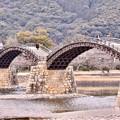 Photos: 山口県岩国の錦帯橋の綺麗さがわかる風景(2) 20180219