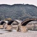 写真: 岩国の錦帯橋と岩国城が見れる風景。。20180219