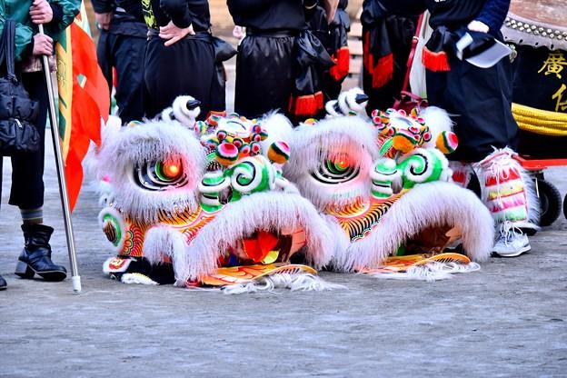 横浜中華街春節 祝舞遊行フィナーレ 祭り終えた中国獅子舞 20180224