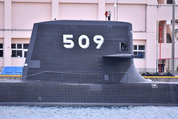 写真: 今のうちにだった509 新鋭潜水艦せいりゅう ヴェルニー公園 20180407