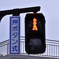 写真: 辻堂海浜公園の信号機は赤もアトム。。20180407