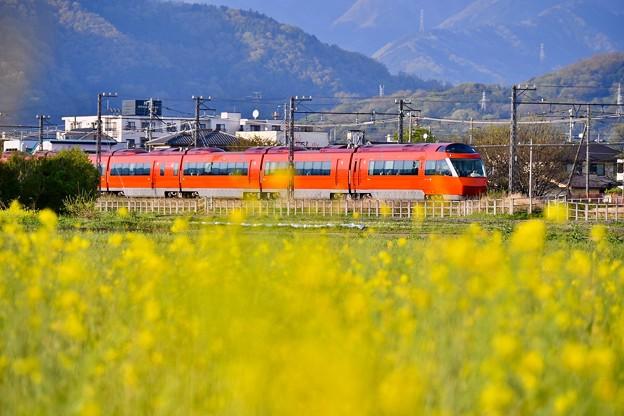 夕暮れの開成町 オレンジ色のロマンスカーGSEと黄色い菜の花(1)  20180407