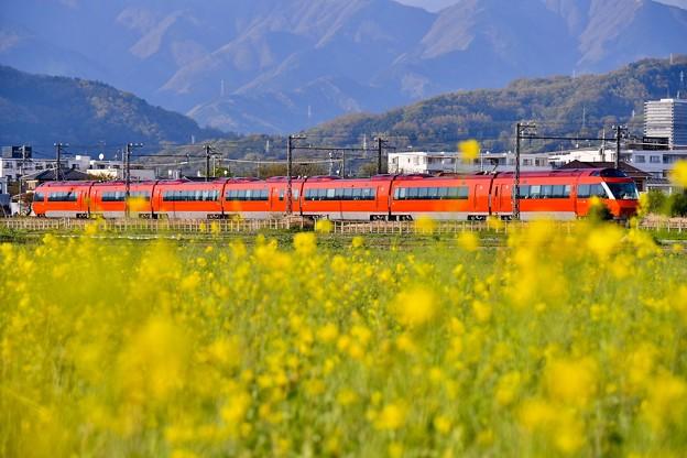 夕暮れの開成町 オレンジ色のロマンスカーGSEと黄色い菜の花(2)  20180407