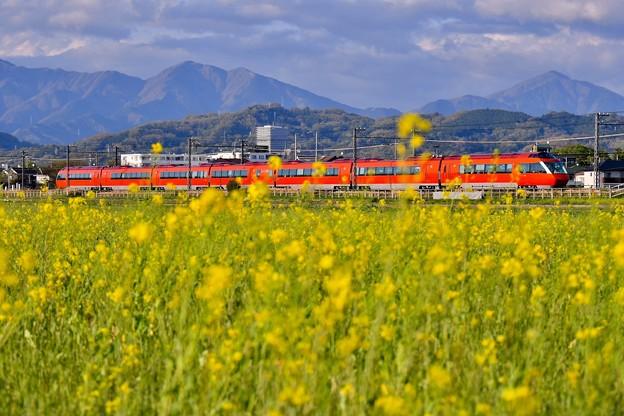 夕暮れの開成町 オレンジ色のロマンスカーGSEと黄色い菜の花(5)  20180407