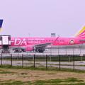 写真: 久しぶりに行った茨城空港 ピンクのFDA 20180412