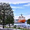 帰って来た横須賀ヴェルニー公園の砕氷艦しらせ 20180415