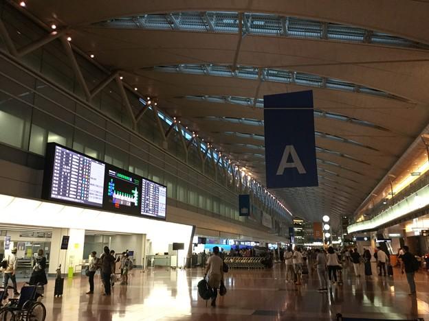撮って出し。。早朝の羽田空港第2ターミナル 札幌へ 8月11日