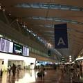 写真: 撮って出し。。早朝の羽田空港第2ターミナル 札幌へ 8月11日