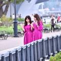 写真: 撮って出し。。軍港の町横須賀ヴェルニー公園風景