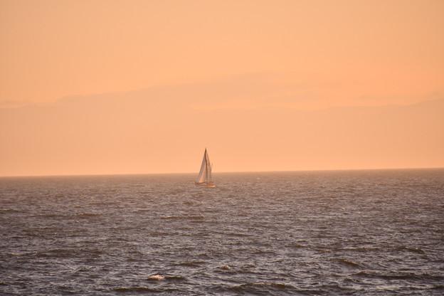 撮って出し。。水平線も見えるヨット 稲村ヶ崎風味 8月26日