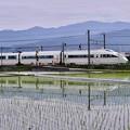 写真: 田んぼの中を小田急ロマンスカーVSE快走 20180526