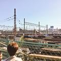写真: 撮って出し。。小田急ロマンスカー最期のLSE見納め 10月21日