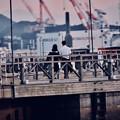 Photos: 夕暮れの関門海峡 初々しいカップル。。デートかな 20180602
