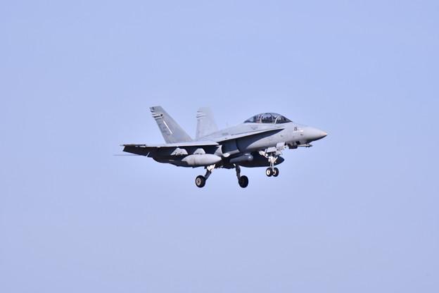 写真: 撮って出し。。横田基地へローカルから帰投バイキングスVMFA225 ホーネット 11月17日