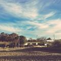 撮って出し。。岐阜基地周辺の風景 航空機待ち 11月18日