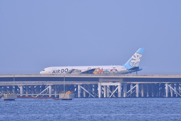 Photos: 夕方の浮島 羽田空港からベアドゥB767 20180624