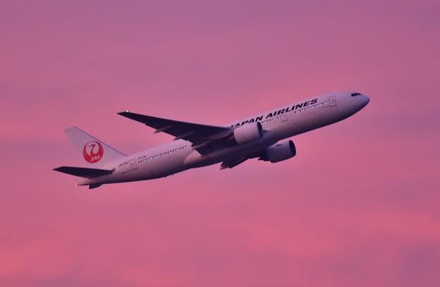 夕焼けの浮島からの旅客機の離陸(1) 20180624