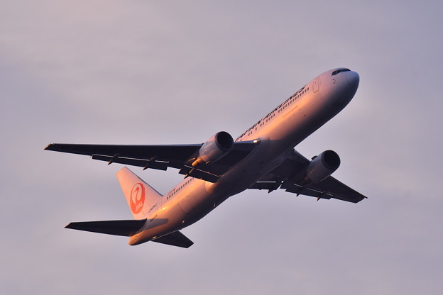 夕焼けの浮島からの旅客機の離陸(2) 20180624