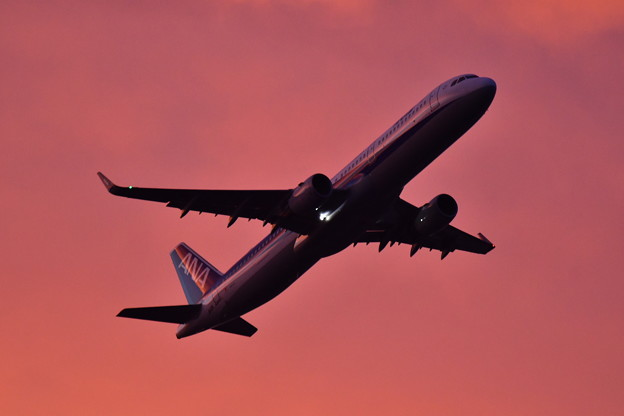 Photos: 夕焼けの浮島からの旅客機の離陸(3) 20180624