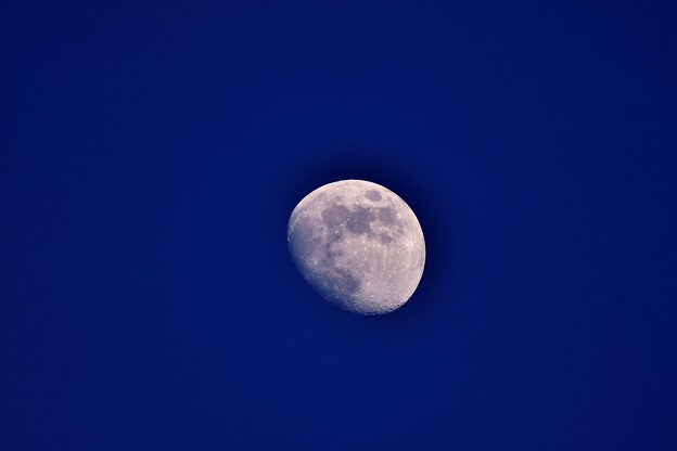 浮島から見えたお月様。。20180624