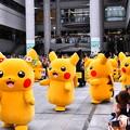 Photos: 2018年振り返って。。横浜みなとみらいピカチュ大量発生チュー(4) 20180815